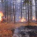 October 18 Test Burn