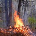 October 16 Test Burn